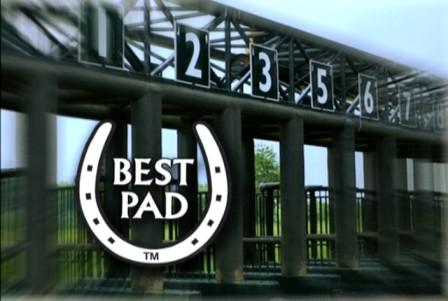 Best Pad Safety padded race starting gate with Best Pad logo
